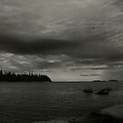 Maine Coast by Theresa Wall Duggan