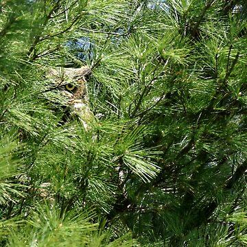 Needle in a haystack by locustgirl
