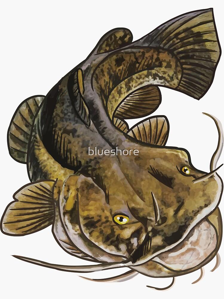 Flathead Catfish Sticker By Blueshore Redbubble