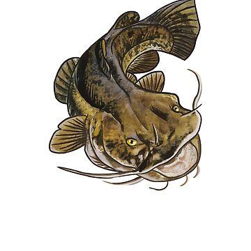Flathead Catfish by blueshore
