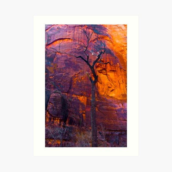 Burning Tree, zion Art Print