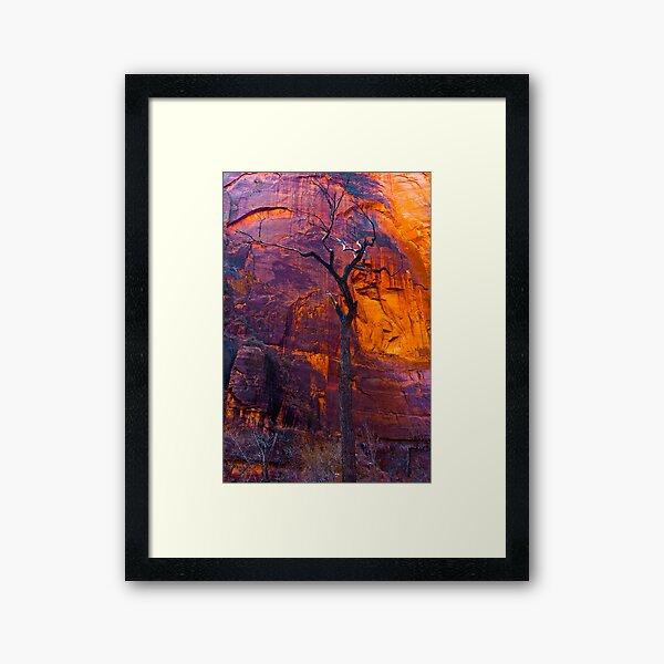 Burning Tree, zion Framed Art Print