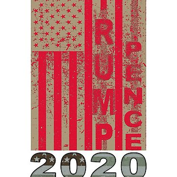 Trump Pence 2020 American Flag Re-election by merchhost