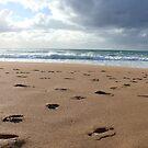 Bye Bye Beach by coastal