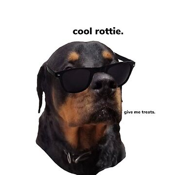 Cool Rottweiler  by adeymaris