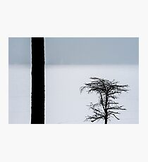 Snowing On The Lake Photographic Print