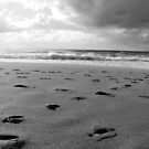 Bye Bye Beach - B & W by coastal