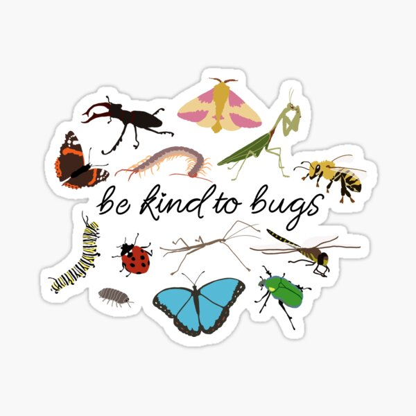 be kind to bugs Sticker