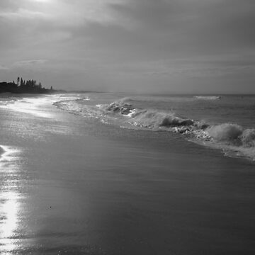 Byron Bay in Monochrome by colinsart