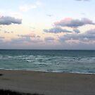 Miami Sunset by Dan Shiels