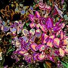 Pink Flowers by Jenebraska