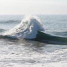 When Waves Collide by Robert Gerard