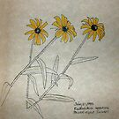 Black-eyed Susan by annimoonsong