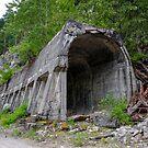 Iago Snow Shed - Coquihalla British Columbia  by Rick Nicholas