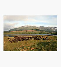Early morning at Lough Inagh Photographic Print