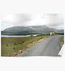 Lough Inagh Valley 2 Poster