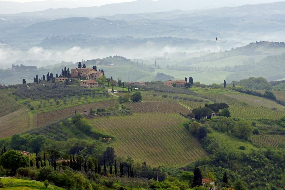 Tuscan Landscape III by Harry Oldmeadow