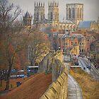 York by Viv Thompson