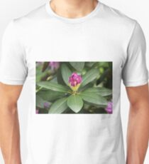 Pink Flower Close Up Unisex T-Shirt