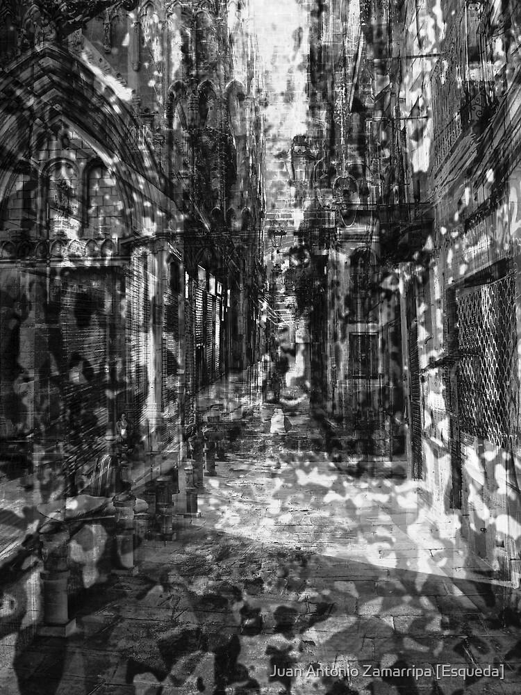 [P1230133-P1230135_P1230137 _GIMP _XnView] by Juan Antonio Zamarripa [Esqueda]