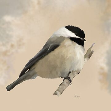 Bird: Willow Tit by bamalam-art