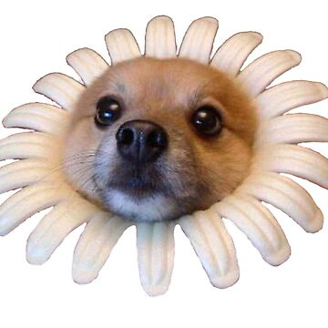 Doggo Stickers: Flower Doggo by Elisecv