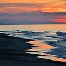 A Walk on the Beach by Brian Gaynor