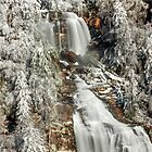 Whitewater Falls in White by Miles Moody