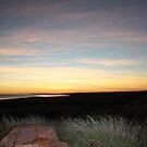 New Dawn by Sheldon Pettit