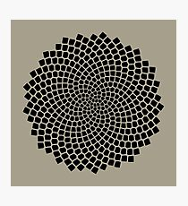 Sunflower Seed Fibonacci Spiral, Golden Ratio, Mathematics, Geometry Photographic Print