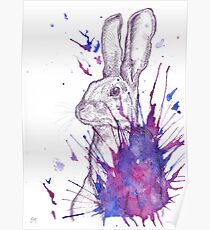Hare splash (pinks and purples)  Poster