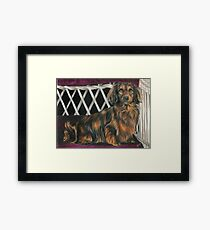 Keeping Your Seat Warm Framed Print