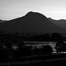 Mt Greville, afternoon light by Mark Batten-O'Donohoe