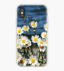 Daisy-Daisy iPhone Case