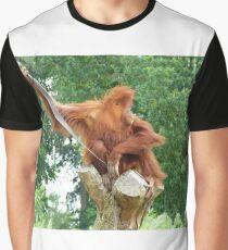 Orangutaning Around Graphic T-Shirt