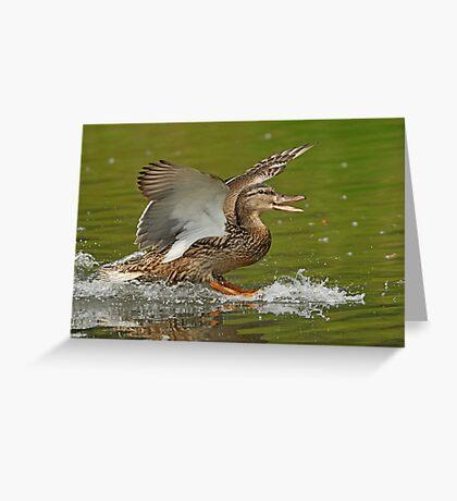 Happy Landing Greeting Card