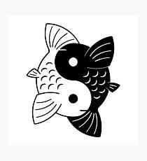 Two Fish - Yin Yang Photographic Print