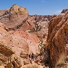 White Domes Trail by Mike Herdering