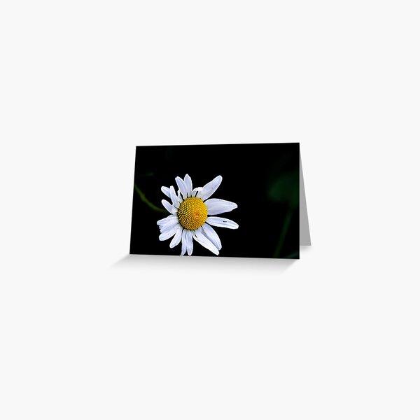 She can hear the daisies grow Greeting Card