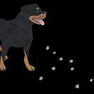 Sirius Canis Major by HopeCvon