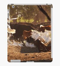 Cattle & Cockatoos in the Australian Bush iPad Case/Skin