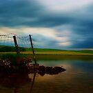 Malham Tarn by Andy Beattie