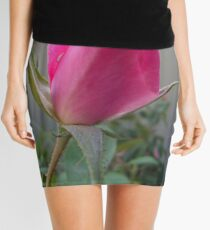 The darling buds of May Mini Skirt