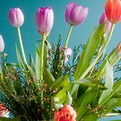 Tulips 5 by JohnW