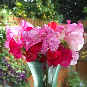 Bunch of Sweet Peas by kathrynsgallery