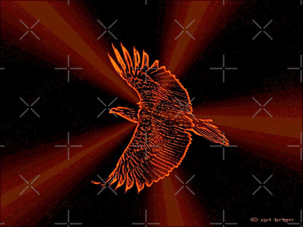 Little Bird by Gail Bridger
