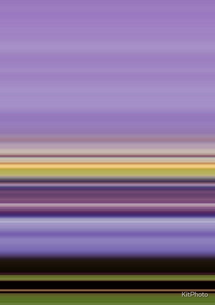 Purple and Yellow by KitPhoto