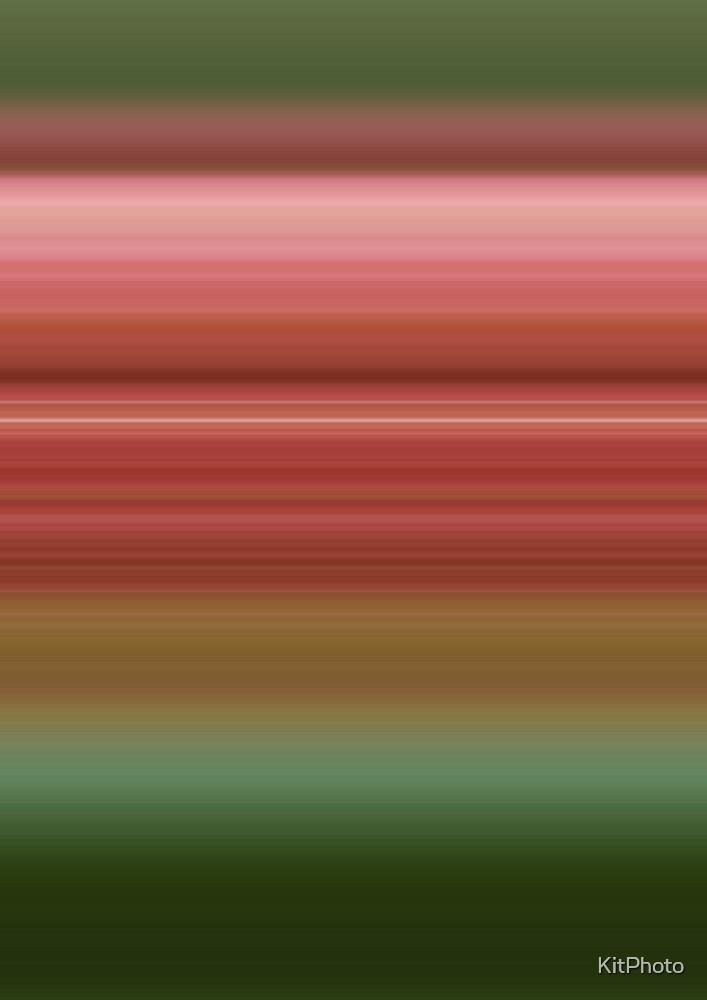 Haze of pink by KitPhoto