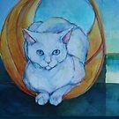 Tunnel vision - cat by Robyn Bradshaw