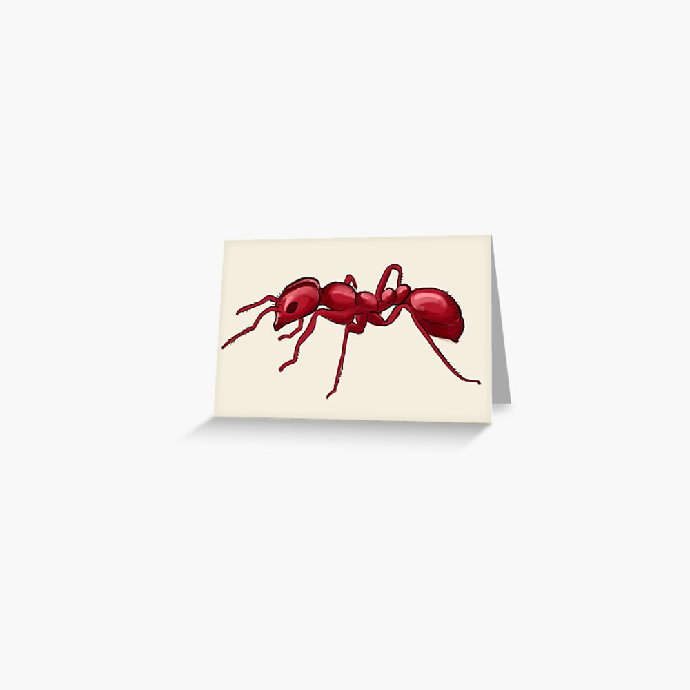 God made an Ant Greeting Card